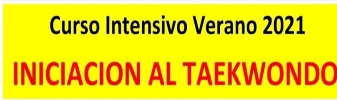 CURSO INTENSIVO DE VERANO DE INICIACION AL TAEKWONDO